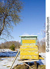 Bee hive home in spring garden melt snow and sky