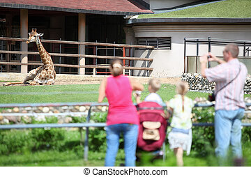 Family of four persons feeds and takes pictures giraffe in...