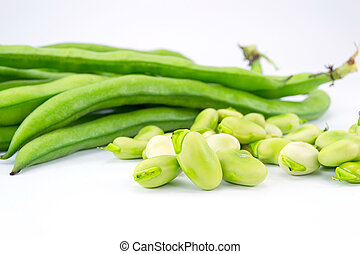 fava beans - fresh beans, freshly harvested vegetable