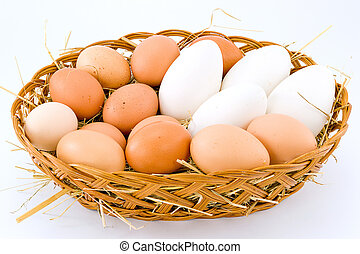 chicken eggs and duck - Fresh eggs of hen and duck