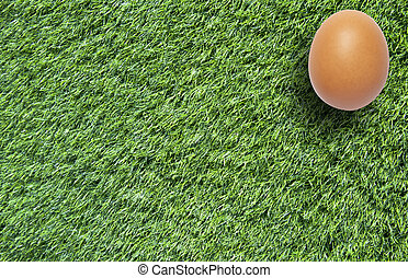 Easter eggs on grass for background