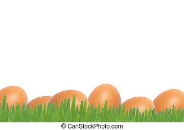 Easter eggs on whiter background