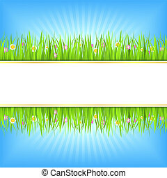 Summer background with green grass