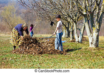 Family at work in an orchard