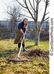 Senior woman spring cleaning in a walnut orchard