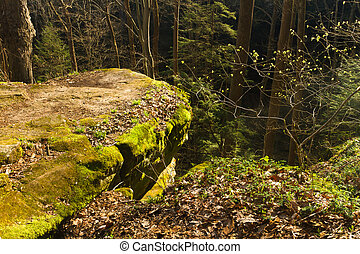 sunlit rocky promontory in forest; Cantwell Cliffs, Hocking...