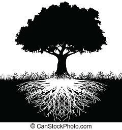 木, 定着する, シルエット