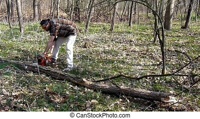 lumberjack - woodcutter with chainsaw sectioning trunk