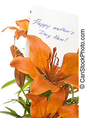 Happy mother Day Mom - Orange tiger lily isolated on white...