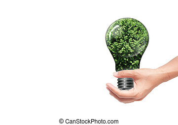 hand holding Bulb with tree inside isolated on white...