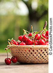 cherries in basket - Sweet cherries in basket outdoor