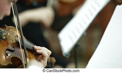 Playing Violin And Cello At Concert Or Reception