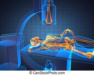 x-ray examination made in