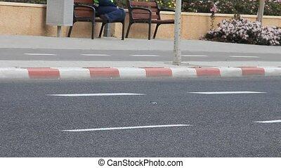 Marathon - Tel Aviv Marathon March 30, 2012