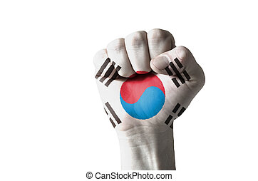 Fist painted in colors of south korea flag - Low key picture...