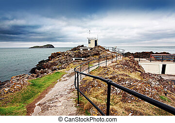 Scottish Seabird Centre, North Berwick