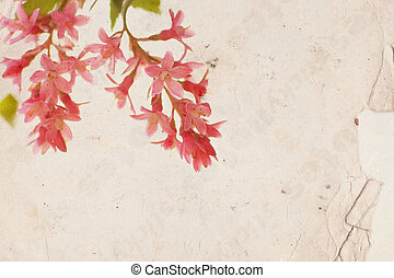 Pink flowers on old paper background