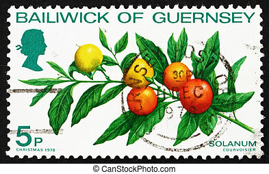 BAILIWICK OF GUERNSEY - CIRCA 1978: a stamp printed in the...