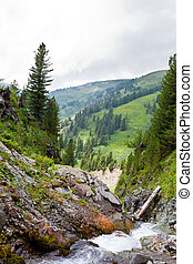 Mountains stream through rocky Altai mountains. Siberia, Russia