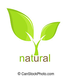 Green Plant - Green leaf natural icon Vector illustration