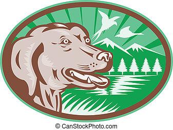 Labrador Retriever Hunting Dog Retro - Illustration of a...