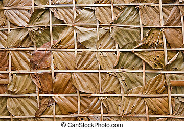 leaf wall texture is natural wall