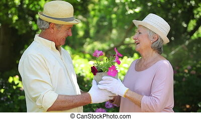 Cute retired couple kissing while gardening together outside