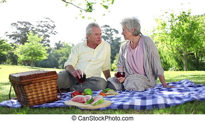 Retired people having a picnic together in a park