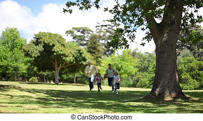 Family running together in a park