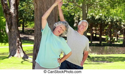 Smiling mature couple doing fitness exercises in a park