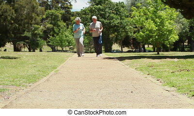 Smiling mature couple jogging together in the countryside