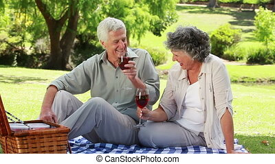 Mature couple clinking their glasses of red wine in a park