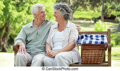 Smiling couple sitting on a bench with a picnic basket in...