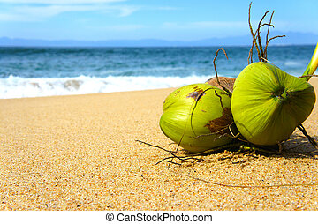 Coconuts - Two Gree Coconuts laying on a tropical beach