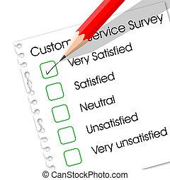Customer Service Survey Paper