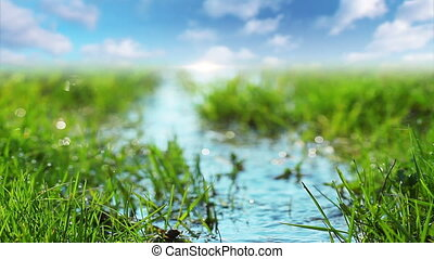 spring brook - spring, grass, river, nature, brook