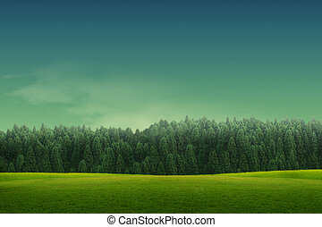 Spring landscape with forrest, tree,green grass and field...