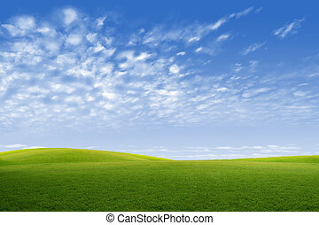 Green field and blue sky with white cloud