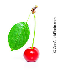 cherry with green leaf isolated on white