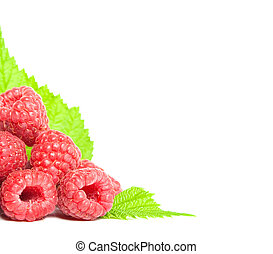 raspberry with green leaves border