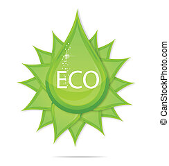 creative eco green drop symbol