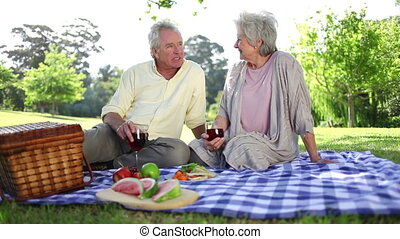 Retired couple having a picnic together