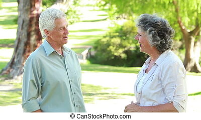 Smiling mature people talking to each other in the...