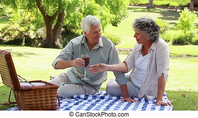Mature people sitting on a blanket with glasses of red wine...