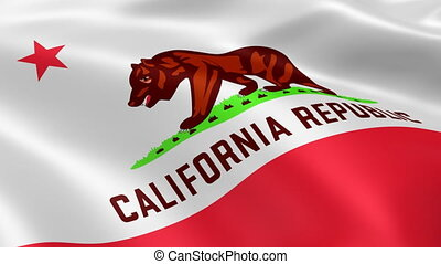 California flag in the wind