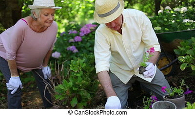 Retired couple gardening together with hats