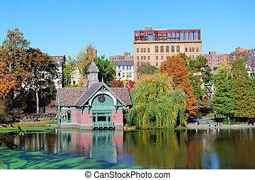 město, centrální, sad, Podzim,  York, čerstvý