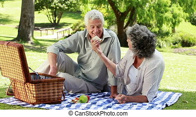 Smiling mature woman giving a sandwich to her husband in a...