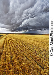 Enormous thundercloud above fields of Montana