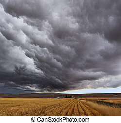 Thunderstorm above fields after harvesting Montana, the USA